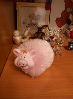 Отдается в дар свинка