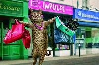 Летний сборный котик для девушки
