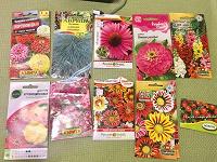 Отдается в дар Семена овощей и цветов