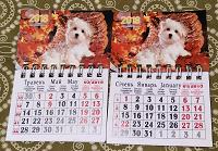 Отдается в дар Магнитные календарики за 2018 и 2019 год