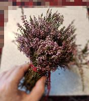 Отдается в дар Сухие цветы к 8 марта