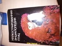 Отдается в дар Энциклопедия птиц
