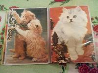 Отдается в дар Альбомчик с котиками