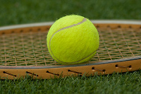 Отдается в дар Тенисный мячик