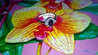 Отдается в дар Серебряное кольцо с сапфиром и фианитами