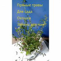 Отдается в дар Пряные травы доя дачи или балкона