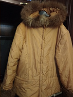Отдается в дар Куртка 52-54