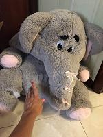 Отдается в дар Большой слон