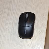 Отдается в дар Мышка
