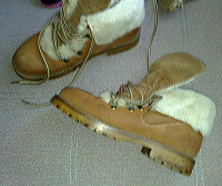 Отдается в дар Зимние ботинки T.Taccardi, 36 размер
