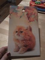 Отдается в дар Доска разделочная с котиком