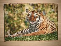 Отдается в дар Гобелен «Тигр»