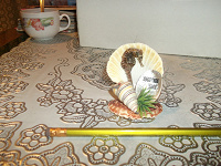 Отдается в дар Сувенир из ракушек