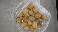 Отдается в дар грецкий орех