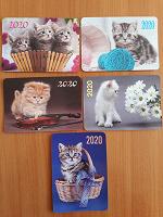 Отдается в дар Карманные календарики — котята