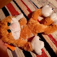 Отдается в дар Большой мягкий кот