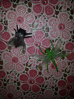 Отдается в дар Фигурки насекомых 2шт