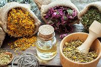 Отдается в дар Лекарственные травы сборы (онкология и не только)