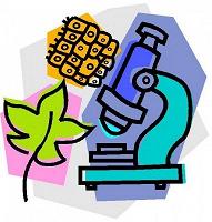 Отдается в дар Подготовка к Егэ, Огэ по биологии и просто для интересующихся данной наукой школьников