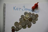 Отдается в дар Котик заморский ( монетный )