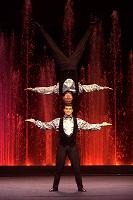 Отдается в дар Билет в цирк «Аквамарин»