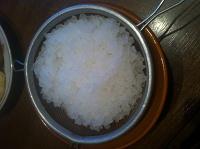 Отдается в дар Индийский морской рис (чайный)