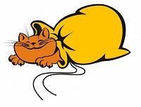 Отдается в дар «Бижутерия» Кот в мешке