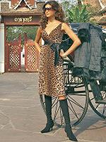 Отдается в дар Платье леопардовое, 46 размер.