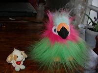 Отдается в дар Блудный попугай и собачка