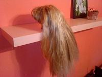 Отдается в дар «Вторые» Волосы))))