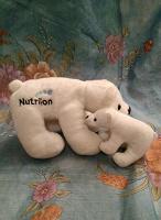 Отдается в дар белые медведи