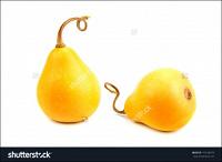 Отдается в дар Семена желтой декоративной грушевидной тыквы