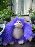 Отдается в дар Задумчивый обезьян и его брат-близнец