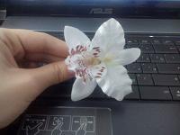 Отдается в дар Заколка в виде цветка.