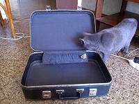 Отдается в дар чемодан советский