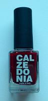 Отдается в дар Лак для ногтей Calzedonia