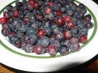 Отдается в дар Свежая ягода Ирга