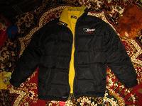 Отдается в дар куртка Bear USA