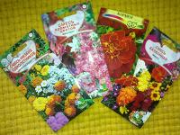 Отдается в дар Для тех, кто не представляет себе лето без цветов