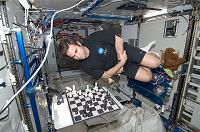 Отдается в дар Научу играть в шахматы