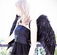 Отдается в дар Чёрные крылья