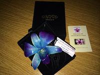 Отдается в дар Орхидея на шею