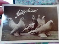Отдается в дар Ретрооткрытки 1961 год