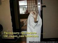 Отдается в дар Кот вещевой женский 40-44