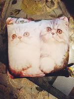Отдается в дар Маленькая подушка