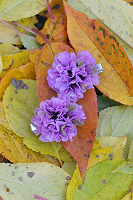 Отдается в дар 2 заколки в форме цветов