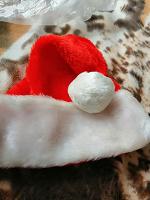 Отдается в дар Колпак Деда Мороза