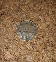 Отдается в дар Монета Болгарии