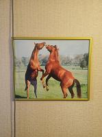 Отдается в дар Фото-картина с лошадьми