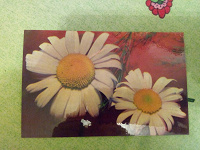 Отдается в дар Открытка «Цветы»